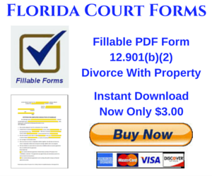 Instant Download PDF Fillable Form 12.901(b)(2)